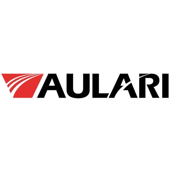 Aulari client Soluflex RH consultation