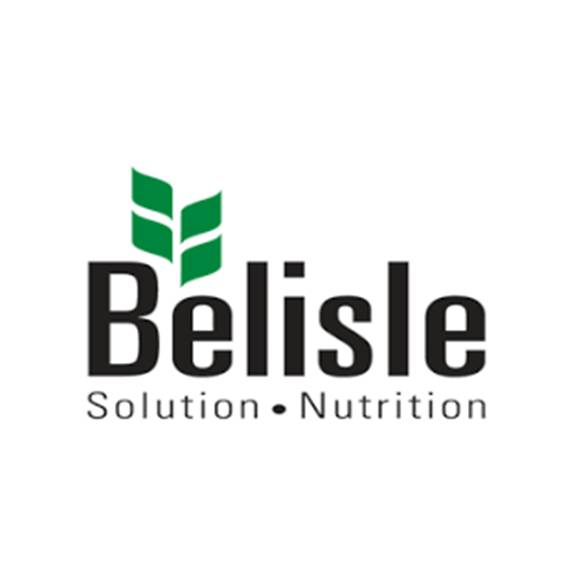 Belisle client Soluflex RH consultation